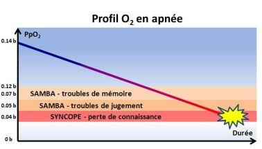 Graphique : D. Tournassat