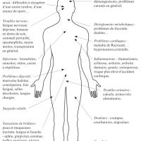 L'équilibre acido-basique (pH) des apnéistes